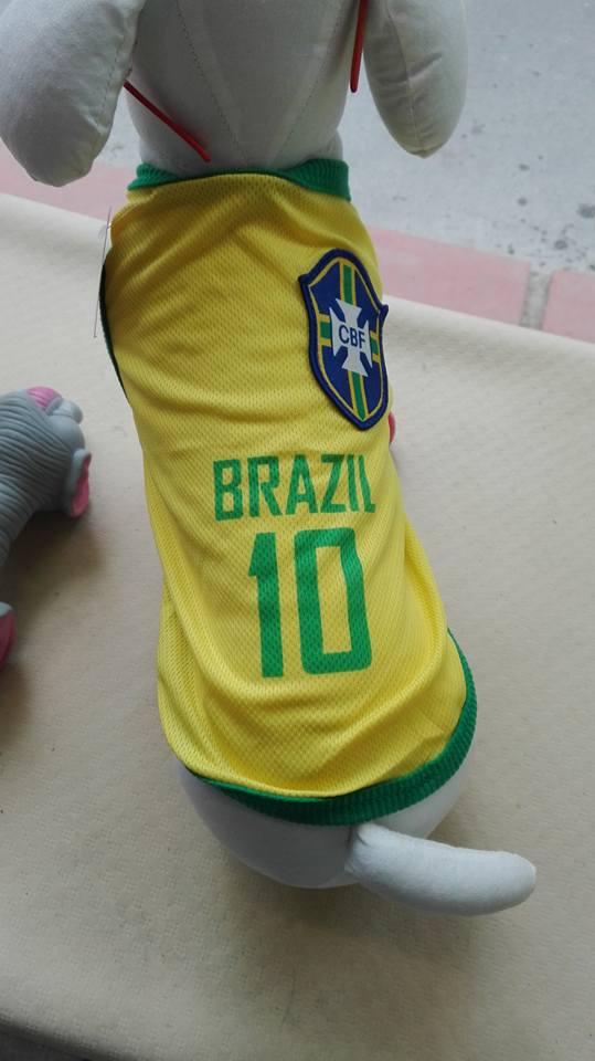 brazil maillot