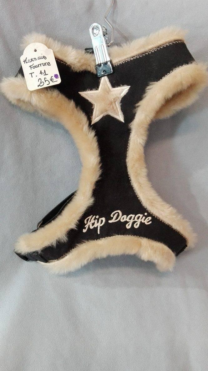 harnais hipp dogy