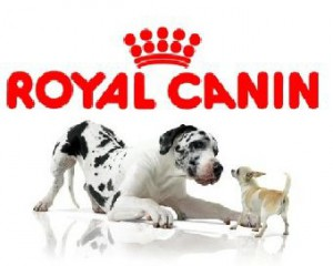 Les croquettes Royal Canin près de chez vous